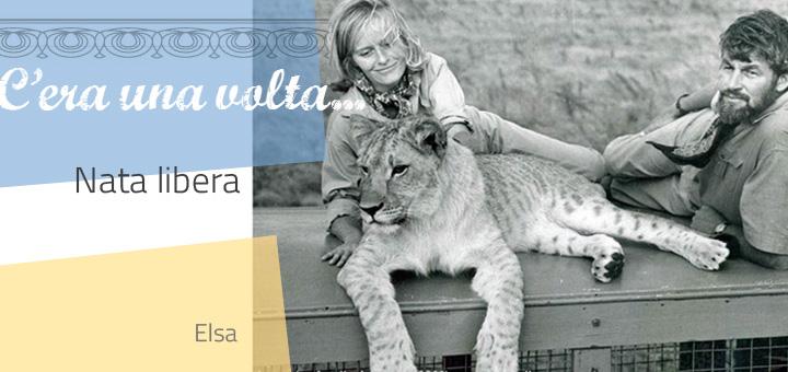 ceraunavolta_natalibera2